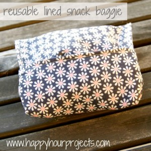 Reusable Lined Snack Baggies