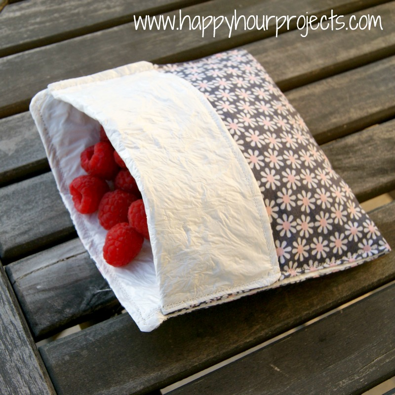 Reusable Lined Snack Baggies at www.happyhourprojects.com