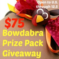 Bowdabra Two-Prize Pack Giveaway at Happy Hour Projects