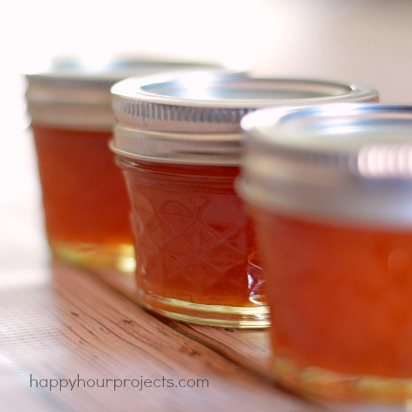 Pectin Free Peach Jam with 3 Ingredients at www.happyhourprojects.com