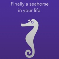Photo Sharing Made Easy with the Seahorse Photo App #SeahorseApp