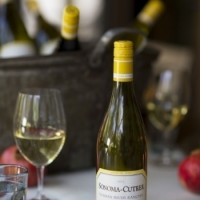 Holiday Entertaining: Choosing a Great Wine