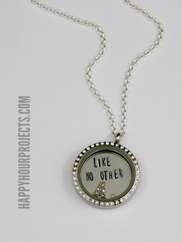 How To Give a Living Locket Gift at www.happyhourprojects.com