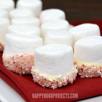 Easy Peppermint Marshmallows at www.happyhourprojects.com