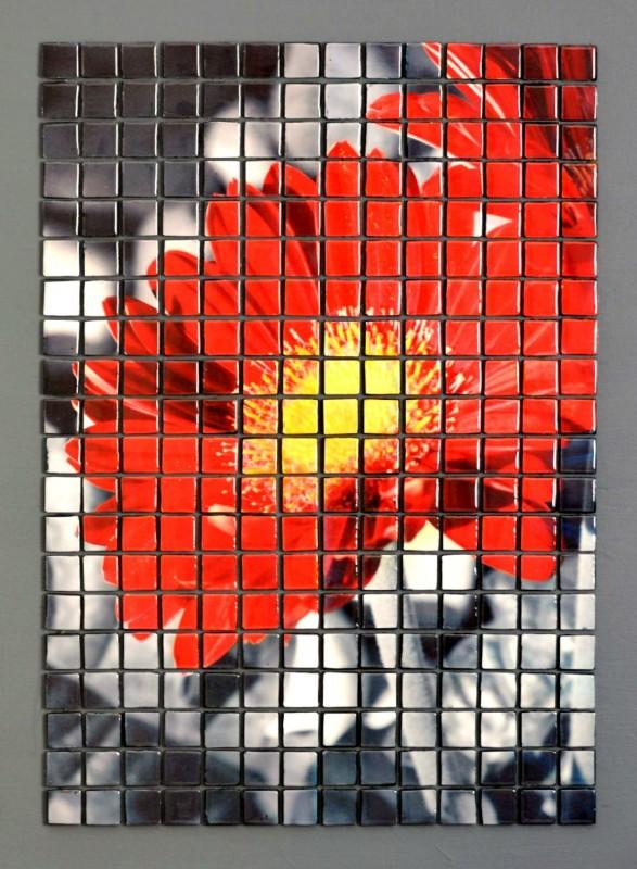 Bloom by Adrianne Surian | Artprize Seven 2015