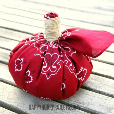 http://happyhourprojects.com/wp-content/uploads/2015/09/No-Sew-Pumpkin-1-400x400.jpg