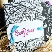 http://www.storypiece.net/2017/03/22/how-to-make-beautiful-adult-coloring-page-seed-packets/
