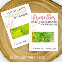 Mother's Day Crafts at happyhourprojects.com | Free printable seed-themed cards!