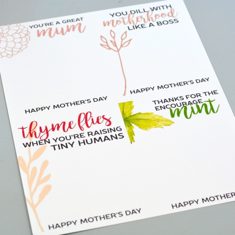 picture about Free Printable Mothers Day Crafts titled Craft Lightning Moms Working day Crafts Seed Packet Playing cards