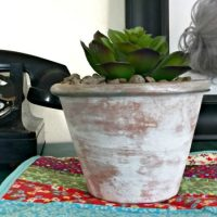 http://365daysofcrafts.com/how-to-dry-brush-a-terra-cotta-pot/